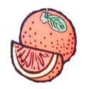 logo kishida.jpg